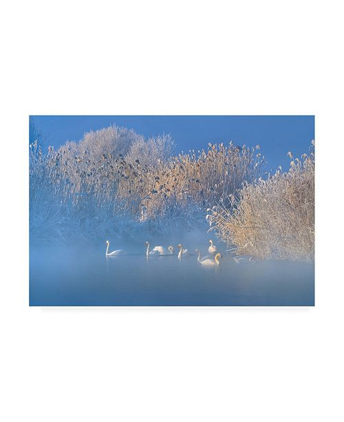 "Trademark Global Hua Zhu Blue Swan Lake Canvas Art - 15"" x 20"""