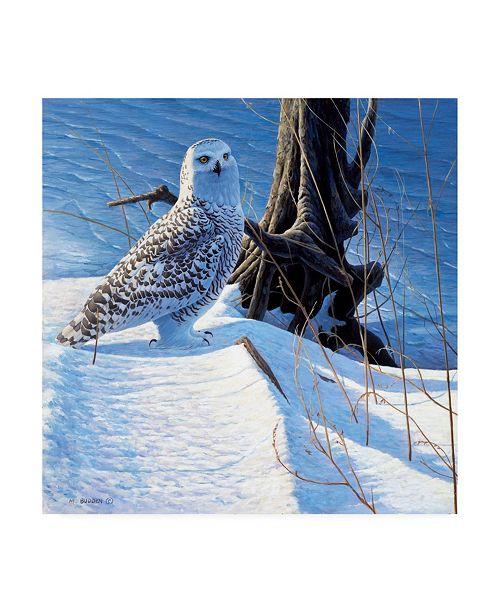 """Trademark Global Michael Budden Winter Snow Canvas Art - 15"""" x 20"""""""