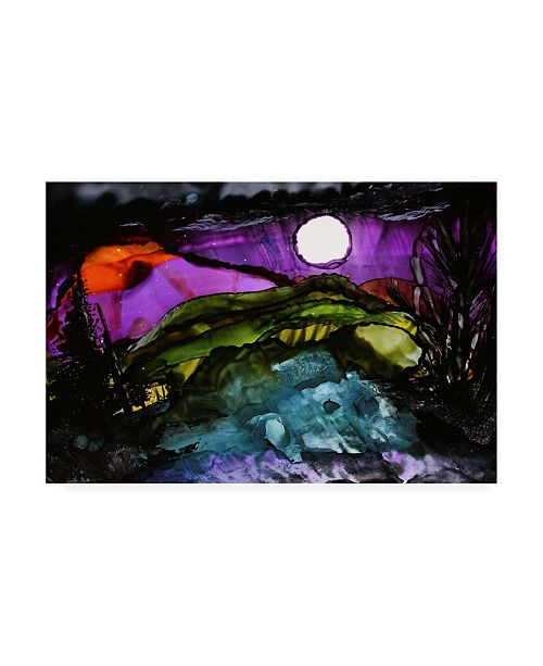 "Trademark Global Michelle Mccullough Midnight Sky Canvas Art - 37"" x 49"""