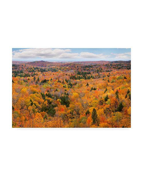 "Trademark Global Monte Nagler Autumn Palette Marquette Michigan Color Canvas Art - 20"" x 25"""