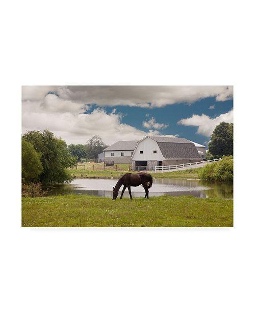 "Trademark Global Monte Nagler Horse and Barn Shipshewana Indiana Color Canvas Art - 20"" x 25"""