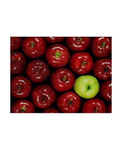 "Trademark Global Monte Nagler Apples Single Canvas Art - 37"" x 49"""