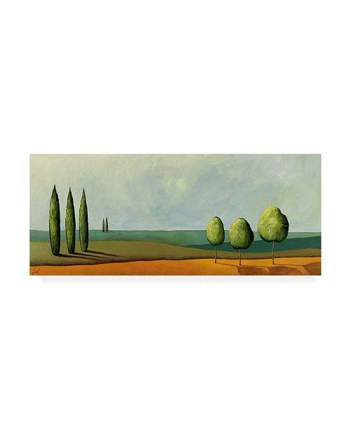 "Trademark Global Pablo Esteban Green Tuscan Paint Landscape 3 Canvas Art - 36.5"" x 48"""