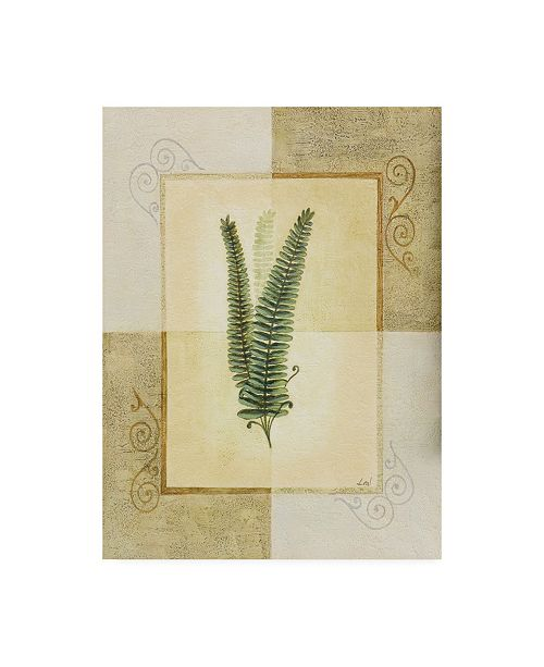 "Trademark Global Pablo Esteban Fern Leaf Framed 4 Canvas Art - 15.5"" x 21"""