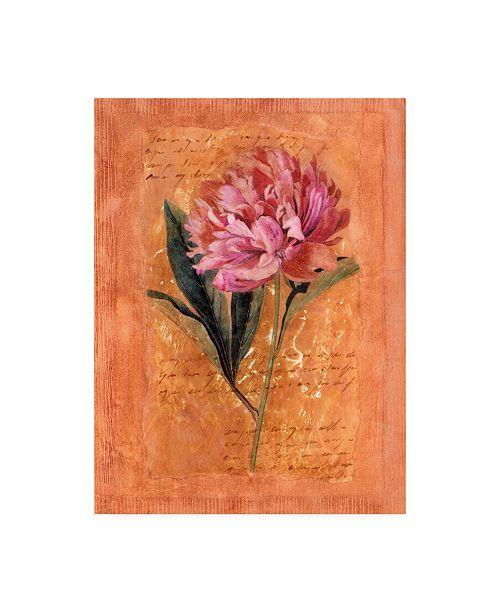 "Trademark Global Pablo Esteban Pink Flowers Red Canvas Art - 27"" x 33.5"""