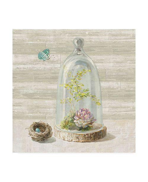 "Trademark Global Danhui Nai Succulent Garden III Canvas Art - 15.5"" x 21"""