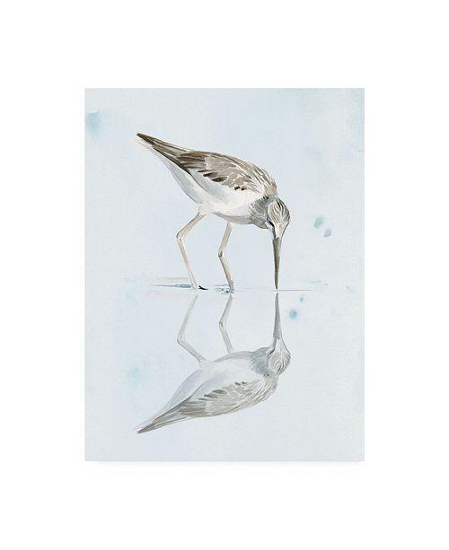 "Trademark Global Jennifer Paxton Parker Sandpiper Reflections I Canvas Art - 19.5"" x 26"""