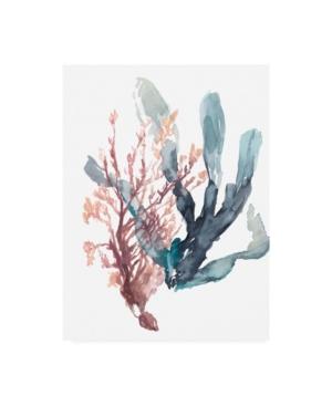 "Jennifer Goldberger Sweet Seaweed I Canvas Art - 36.5"" x 48"""