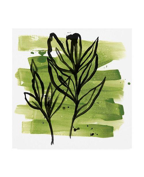 "Trademark Global June Erica Vess Tropical Sumi E VI Canvas Art - 36.5"" x 48"""
