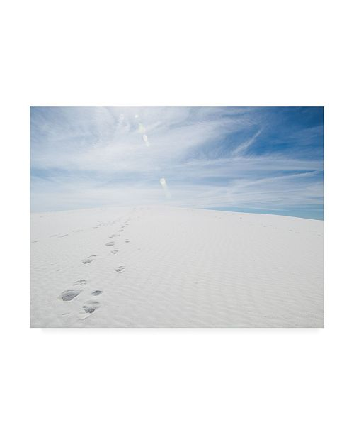 "Trademark Global Sonja Quintero White Dunes I Canvas Art - 19.5"" x 26"""