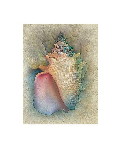 "Trademark Global Steve Hunziker Aquatica IV Canvas Art - 36.5"" x 48"""