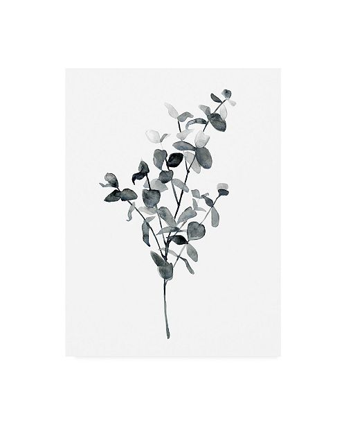 "Trademark Global Emma Scarvey Floral Canvas Art - 36.5"" x 48"""