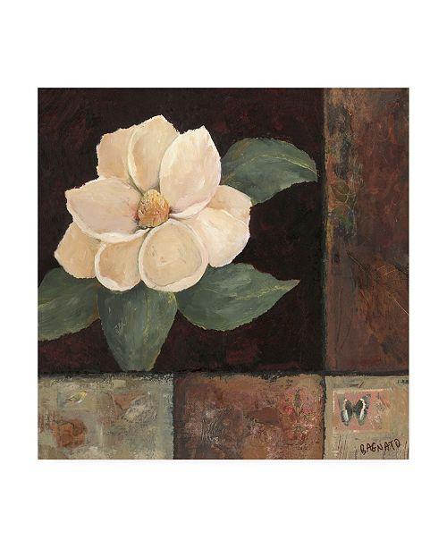 "Trademark Global Judi Bagnato Magnolia Breeze II Canvas Art - 19.5"" x 26"""