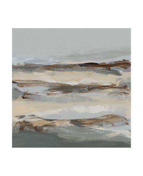 "Trademark Global Christina Long Winter Sun I Canvas Art - 36.5"" x 48"""