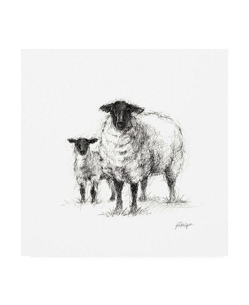 "Trademark Global Ethan Harper Charcoal Sheep Study I Canvas Art - 36.5"" x 48"""