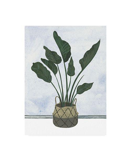 "Trademark Global Melissa Wang Mes Plants III Canvas Art - 36.5"" x 48"""