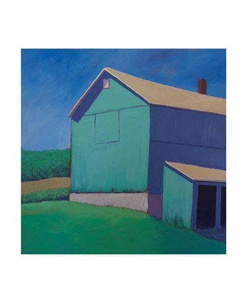 "Trademark Global Carol Young Rustic Teal Canvas Art - 20"" x 25"""