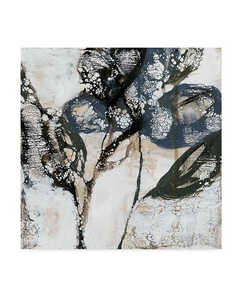 "Trademark Global Jennifer Goldberger Crackled Stems I Canvas Art - 15"" x 20"""