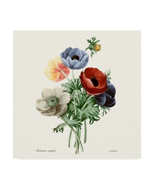 "Trademark Global Pierre Redoute Blushing Bouquet I Canvas Art - 20"" x 25"""