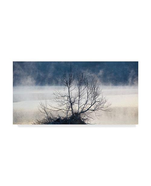 "Trademark Global James Mcloughlin Scene on the Water VII Canvas Art - 15"" x 20"""