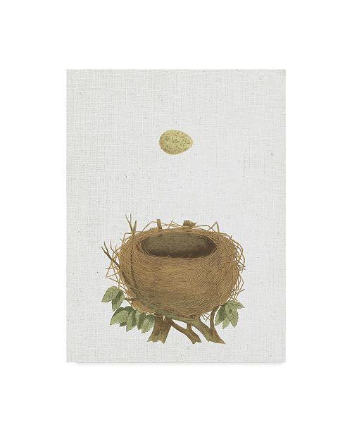 """Trademark Global Wild Apple Portfolio Spring Nest Ii Crop Canvas Art - 20"""" x 25"""""""