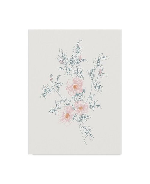 "Trademark Global Wild Apple Portfolio Flowers on White Ii Contemporary Canvas Art - 20"" x 25"""
