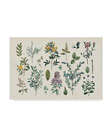"""Wild Apple Portfolio Victorian Garden IV Canvas Art - 15"""" x 20"""""""