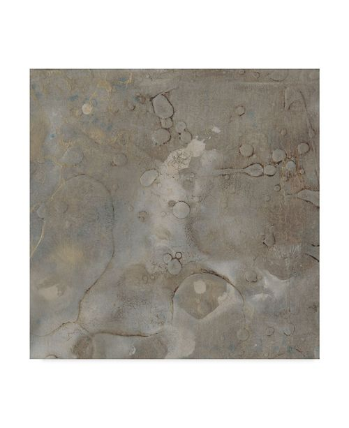 "Trademark Global Renee W. Stramel Celestial Dream I Canvas Art - 15"" x 20"""