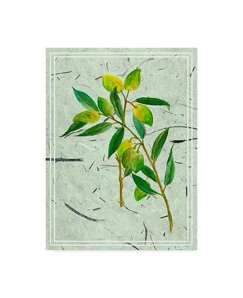 "Trademark Global Melissa Wang Olives on Textured Paper I Canvas Art - 15"" x 20"""