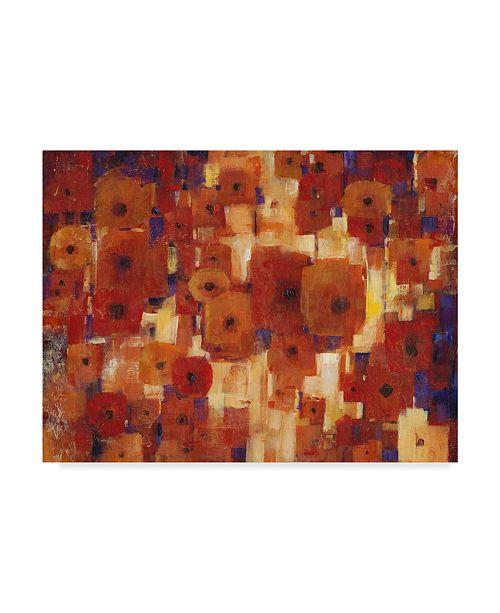 "Trademark Global Tim Otoole Transitional Poppies I Canvas Art - 20"" x 25"""