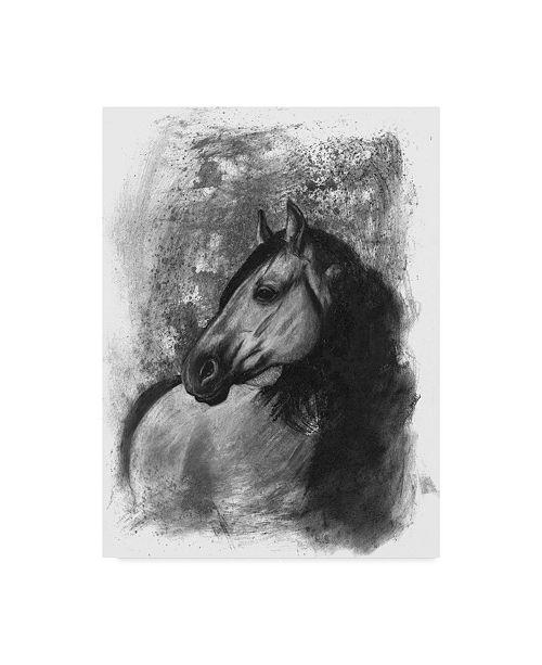 "Trademark Global Naomi Mccavitt Charcoal Equestrian Portrait IV Canvas Art - 15"" x 20"""
