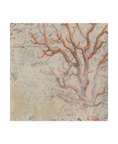 "Trademark Global June Erica Vess Coastal Cameo VI Canvas Art - 20"" x 25"""