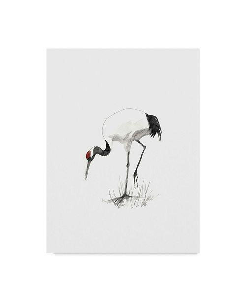 "Trademark Global Naomi Mccavitt Japanese Cranes II Canvas Art - 20"" x 25"""