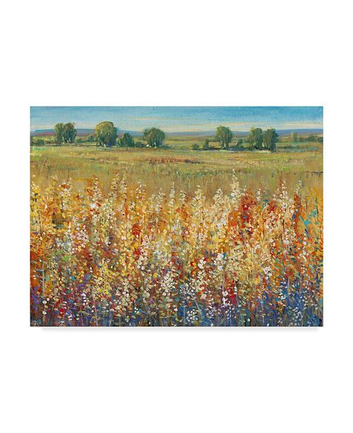 """Trademark Global Tim Otoole Gold and Red Field I Canvas Art - 20"""" x 25"""""""
