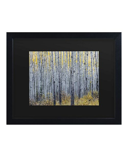 "Trademark Global Pierre Leclerc Forest of Aspen Trees Matted Framed Art - 15"" x 20"""