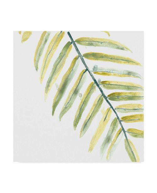 "Trademark Global June Erica Vess Verdant Impressions III Canvas Art - 15"" x 20"""