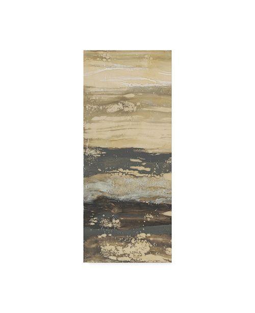 "Trademark Global Jennifer Goldberger Terre Umber I Canvas Art - 20"" x 25"""