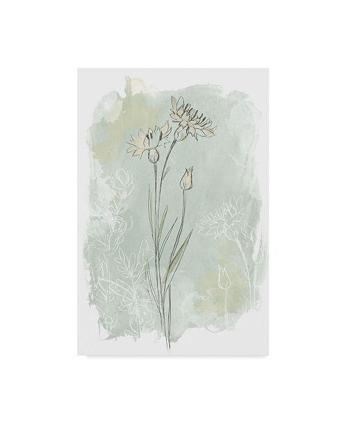 "Trademark Global June Erica Vess Stone Flower Study I Canvas Art - 20"" x 25"""