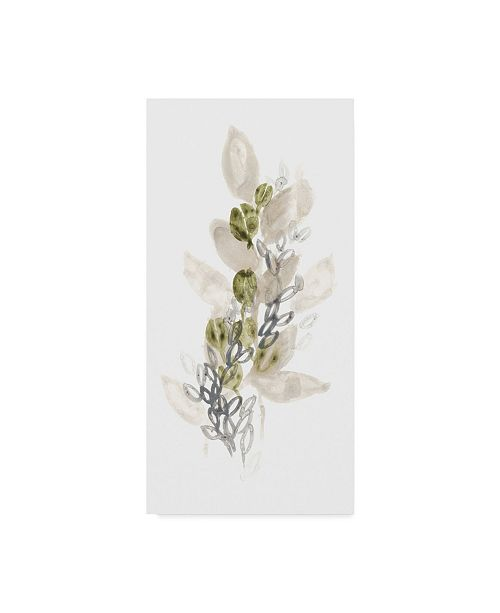 "Trademark Global June Erica Vess Botanica Whimsy III Canvas Art - 20"" x 25"""