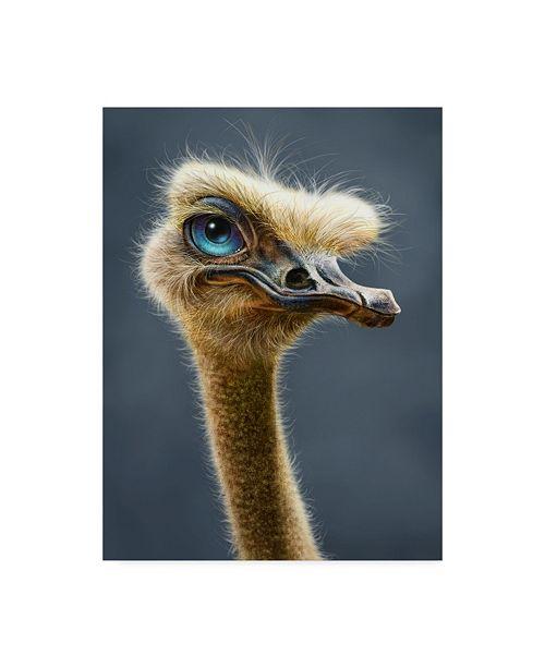 "Trademark Global Patrick Lamontagne Ostrich Totem Canvas Art - 20"" x 25"""