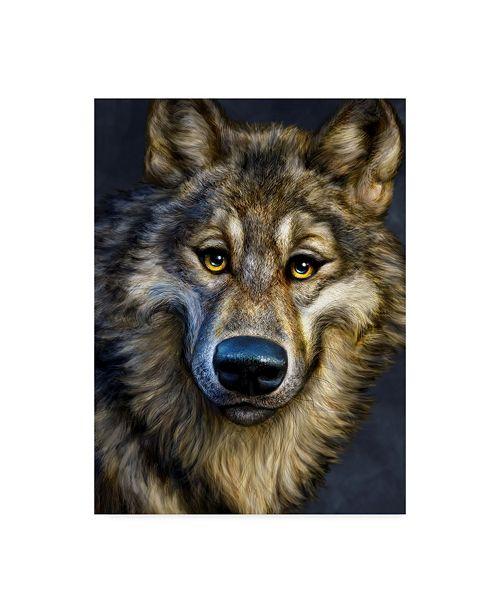 "Trademark Global Patrick Lamontagne Wolf Totem Canvas Art - 37"" x 49"""