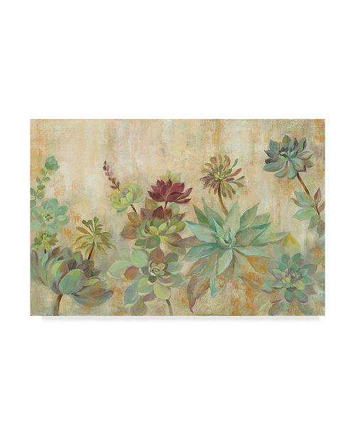 "Trademark Global Silvia Vassileva Rustic Succulent Garden Canvas Art - 37"" x 49"""