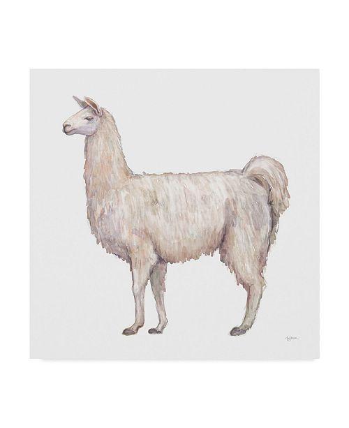 "Trademark Global Mary Urban Bohemian Cactus Llama Canvas Art - 15"" x 20"""