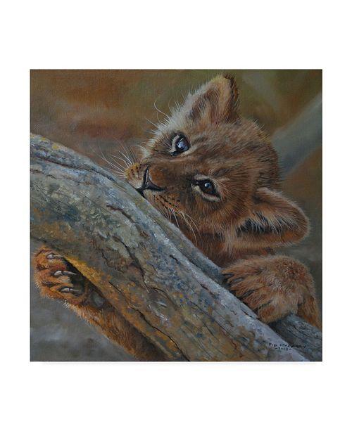"Trademark Global Pip Mcgarry Play Lion Cub Canvas Art - 27"" x 33"""