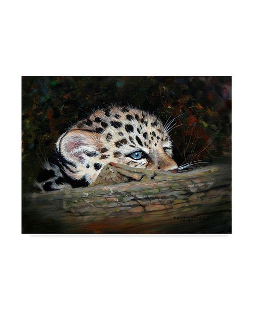"Trademark Global Pip Mcgarry Peekaboo Amur Leopard Cub Canvas Art - 20"" x 25"""