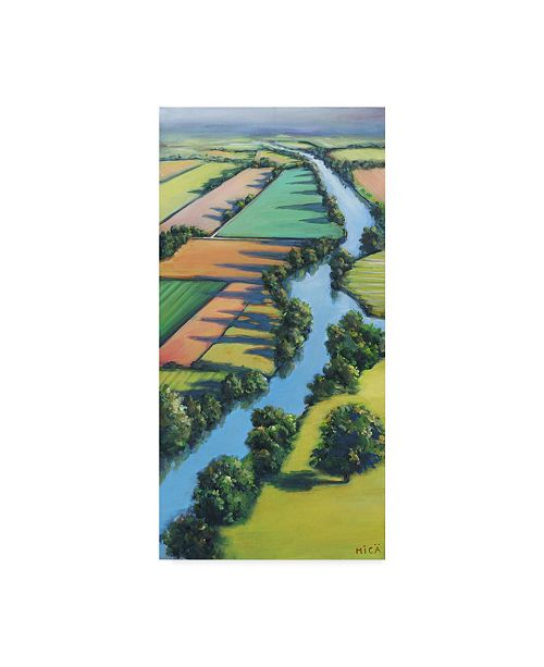 """Trademark Global Mica Flying Above I Canvas Art - 15"""" x 20"""""""