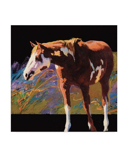 "Trademark Global Julie T. Chapman Color Square I Canvas Art - 15"" x 20"""
