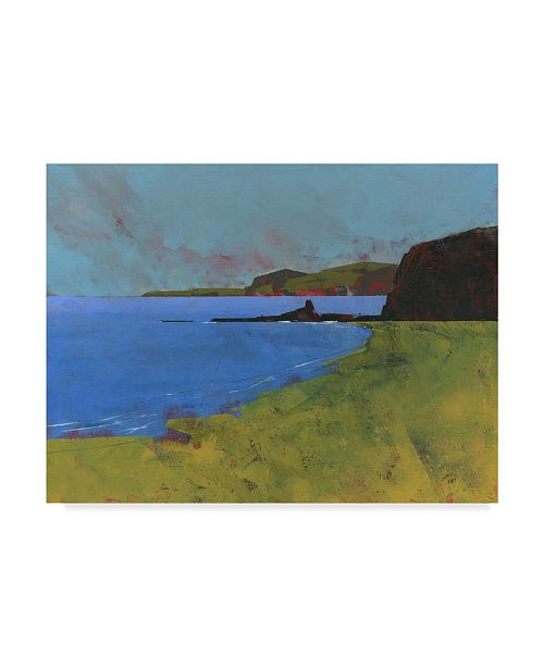"Trademark Global Paul Bailey Ceredigion Cliffs Canvas Art - 15"" x 20"""