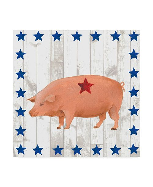 "Trademark Global Regina Moore Americana Animals IV Canvas Art - 20"" x 25"""