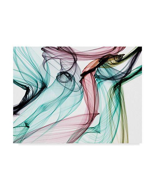 "Trademark Global Irena Orlov Invisible World V Canvas Art - 20"" x 25"""